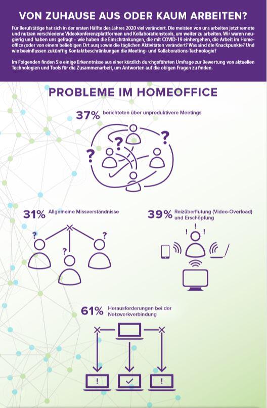 infographic Biz
